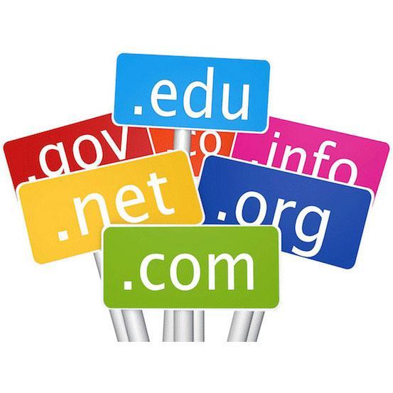 free domain name com net org
