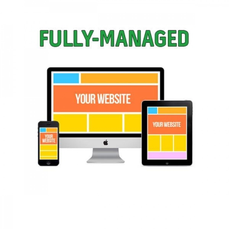 Website fully managed package